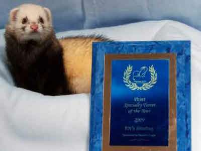 AFA 2009 Point Specialty Ferret of the Year - RN's Jitterbug